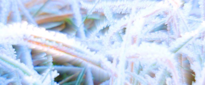 Crystalline Unclear